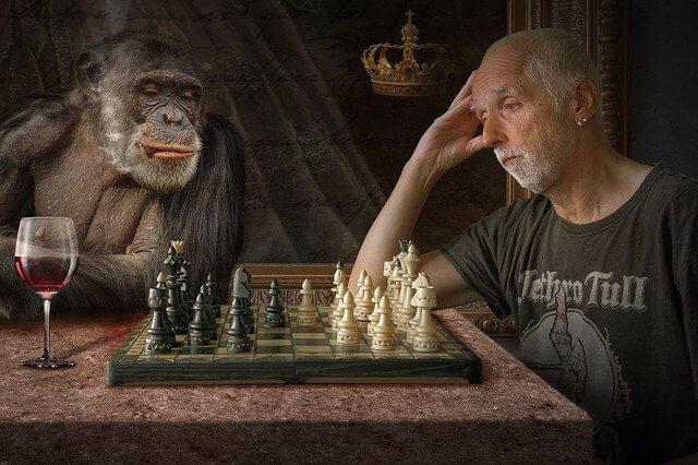 Borsada Maymun Hikayesi